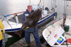 Fiskebilder / Fishing photos / Bilder von Fischen