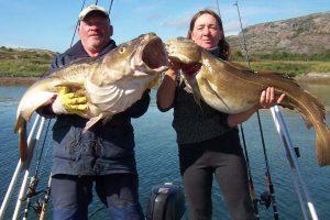 Vågan Feriegård - fiske, Angeln, fishing